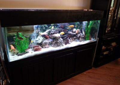 125 gallon  fish tank