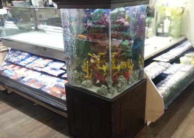 Custom acrylic aquarium(2)